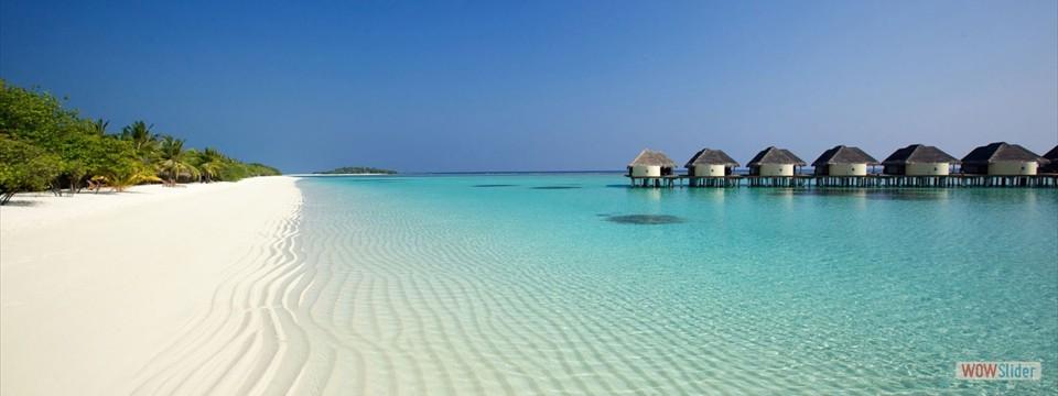 MALDIVE ELITE